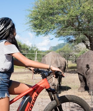 Casela now offers an eco-friendly activity called the E-Bike Safari