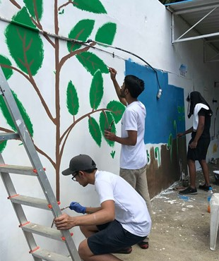 Relooking Painting Operation at Barkly Government School